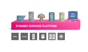 t-systems-dynamic-svcs-300x177