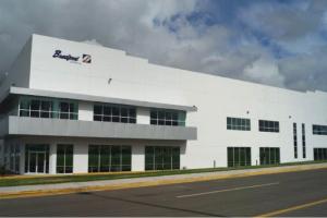 Bradford_de_Mexico_plant