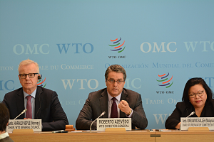 WTO_opt