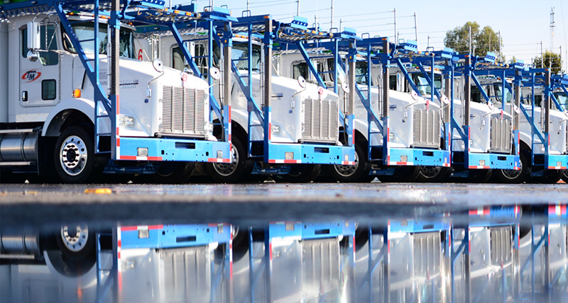 Transportes Marva vehicles in yard