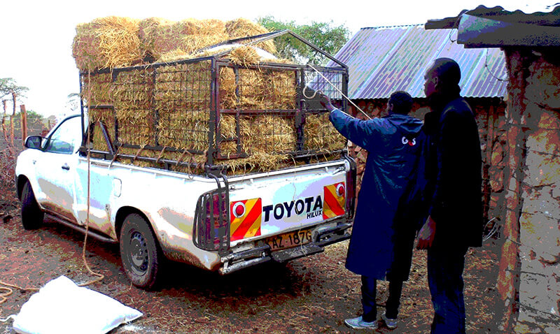 Toyota Hilux in Africa